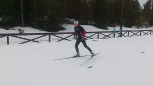 Elina Rönnlund